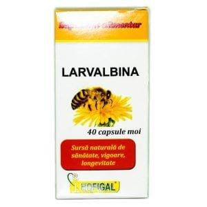 LARVALBINA-40cps(moi)-HOFIGAL