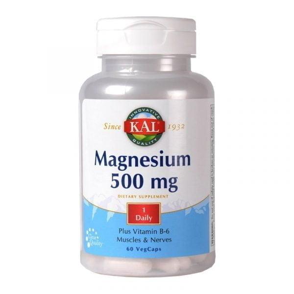 MAGNESIUM-500mg-60cps-SECOM