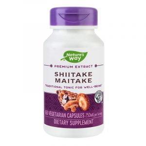 SHIITAKE-MAITAKE-60cps-SECOM